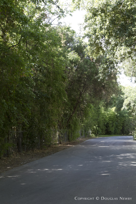 Informal Drive Leading to Second Guest House