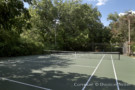 Tennis Court at Crespi Hicks Estate