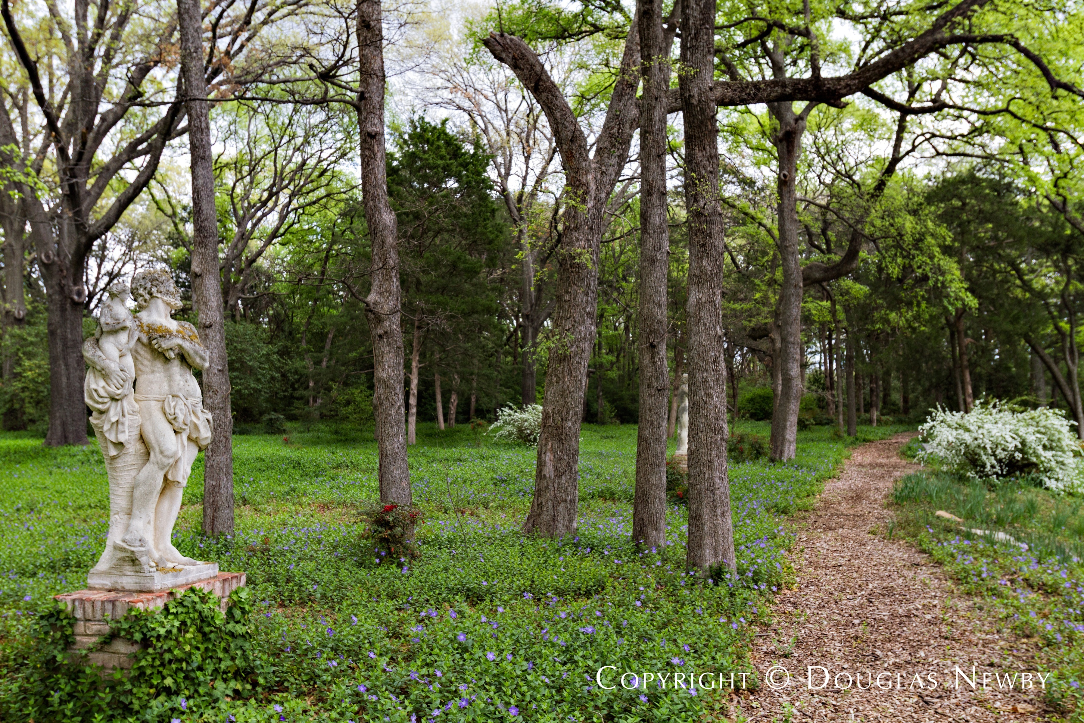Garden and Path on Dallas Estate Property