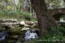 Streams and Creeks of Preston Hollow Estate Property