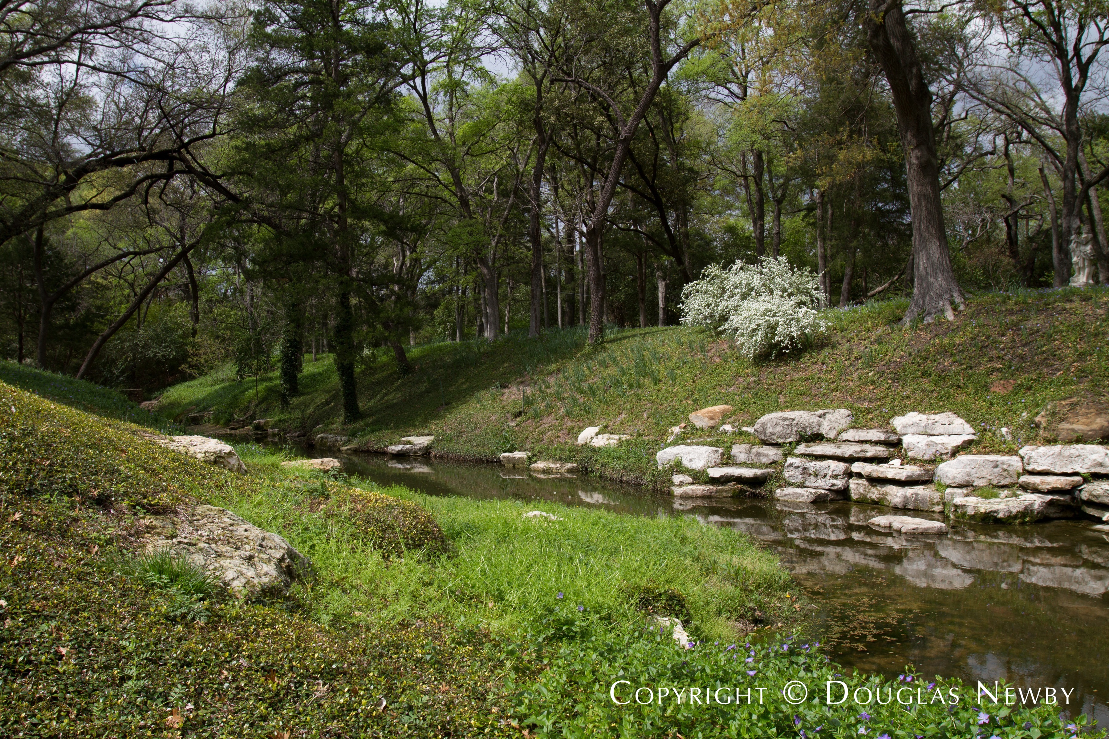 Running Creek on Dallas Estate Property