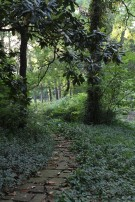 Stone Path on Dallas Estate Property