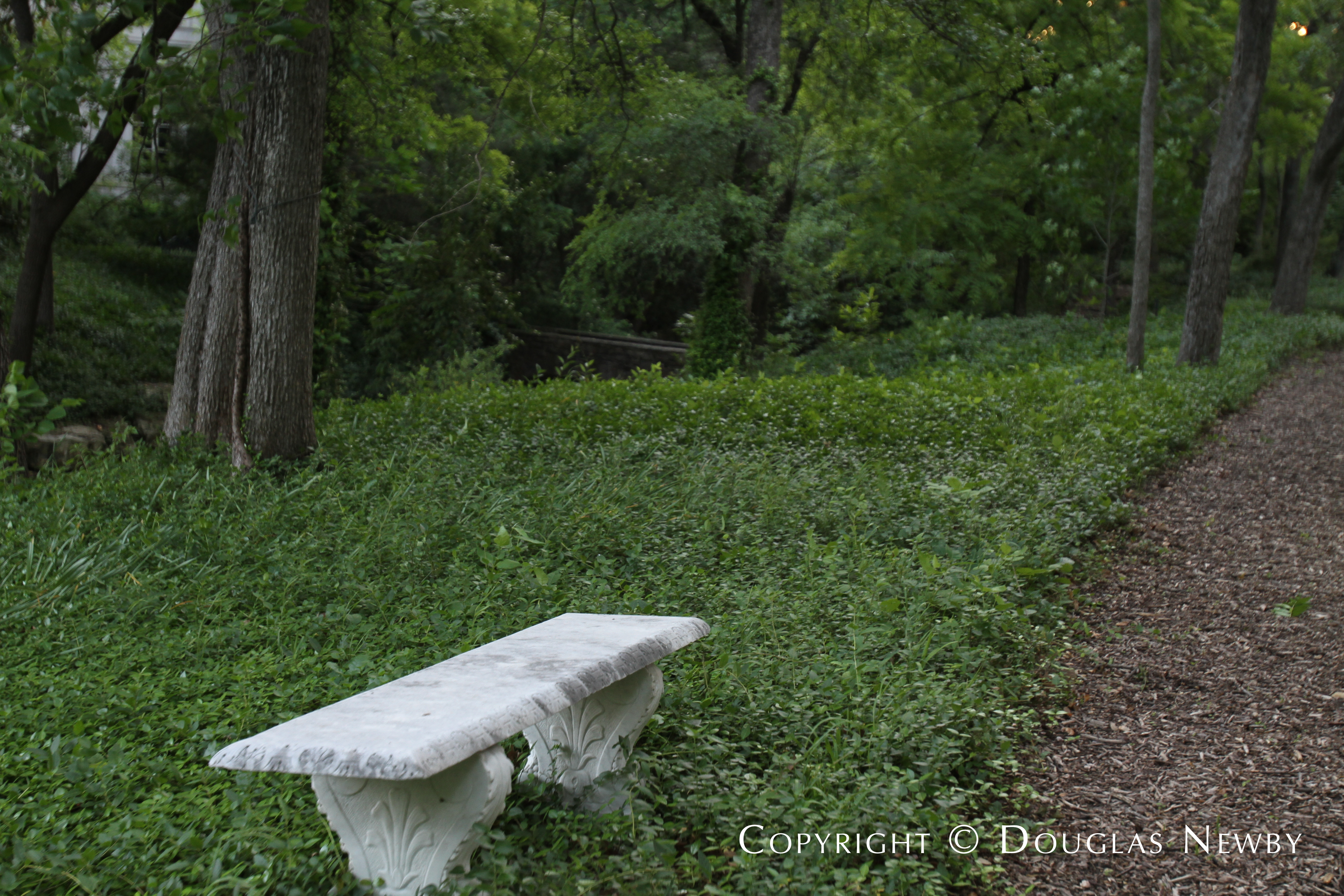 Walking Path in Forest Outside Dallas Estate Home