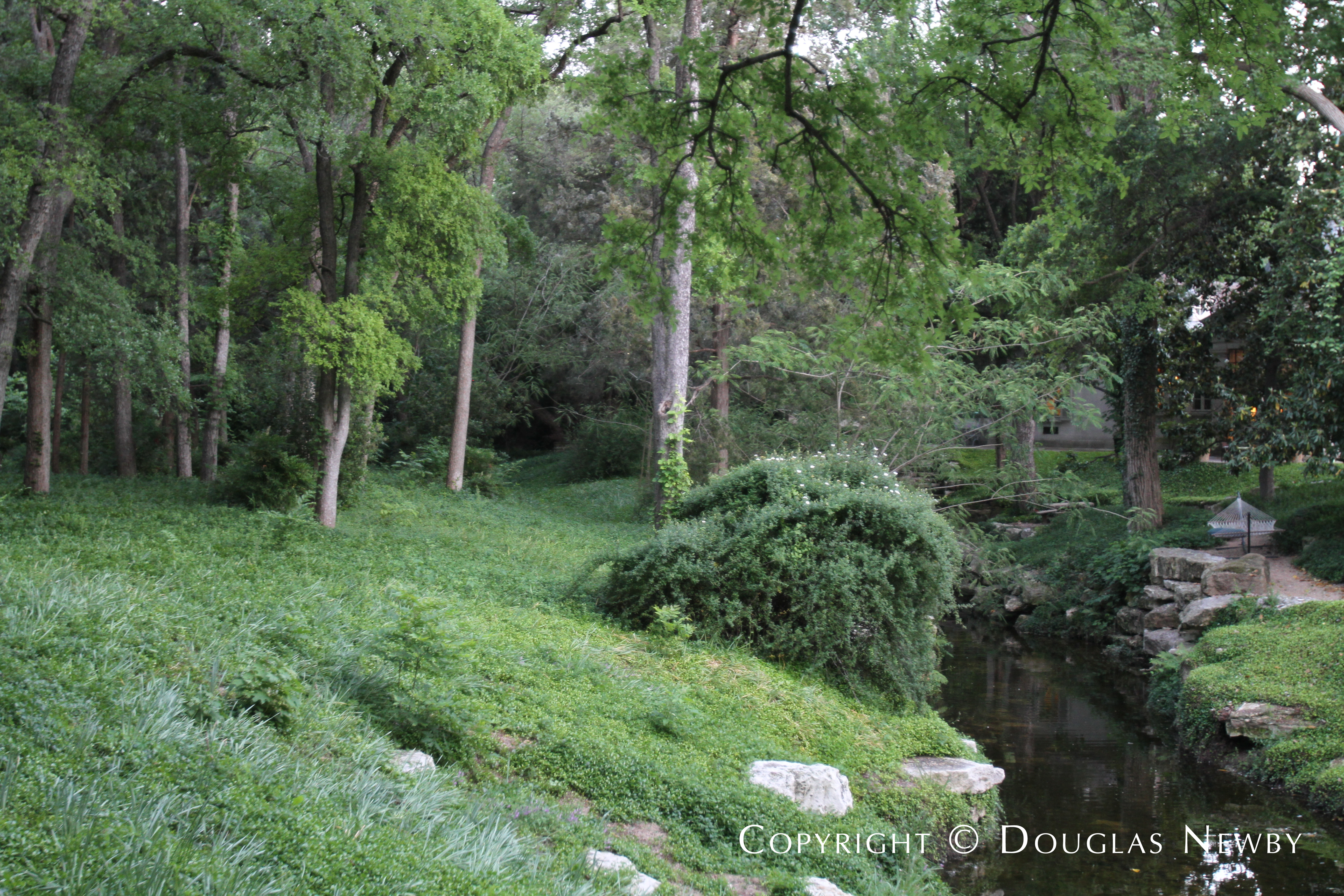 Creek and Wilderness Surrounding Estate Home in Dallas