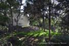Cedar Hill, Texas Real Estate on 1.008 Acres