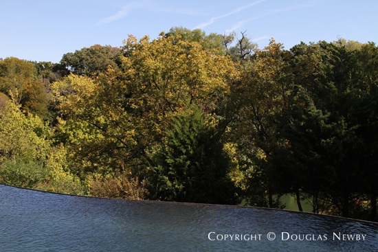View of Trees From Pool on Glen Abbey Estate Property