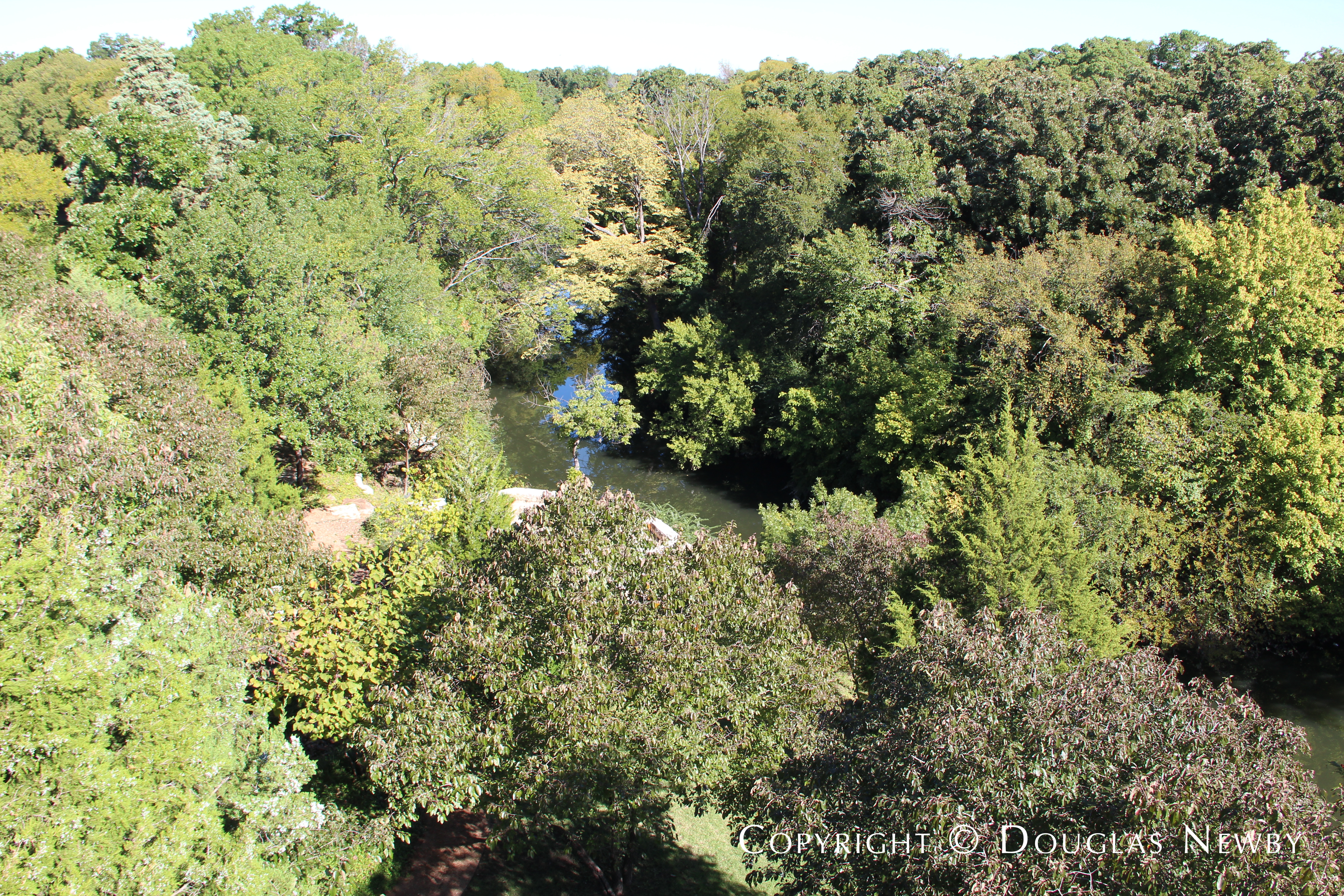 View of Glen Abbey Site, White Rock Creek and Surrounding Nature Area From Upper Balcony