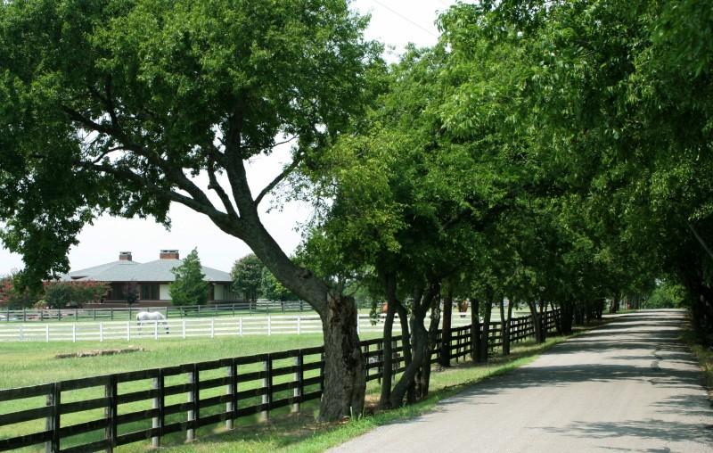 5408 Gregory Lane, Parker, Texas