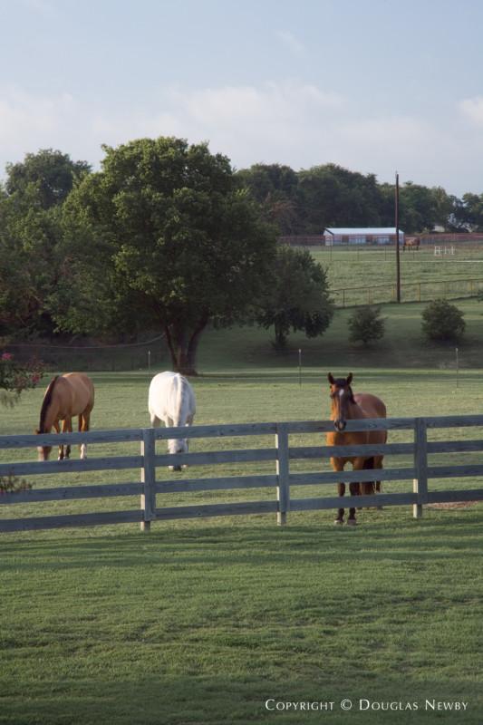 Parker, Texas Home