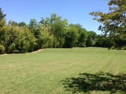 Fisher One Acre Lot