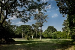 Lot in Preston Hollow