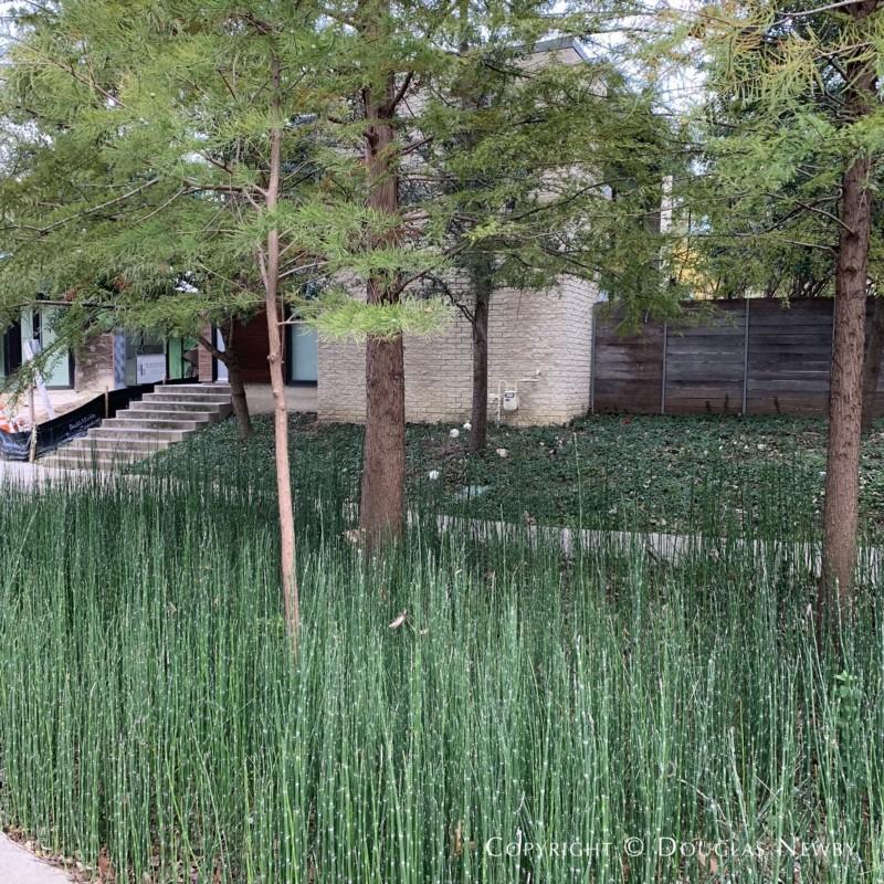 Architects Bruce Bernbaum and Patricia Magadini designed this Urban Reserve 2,478 sf modern home.